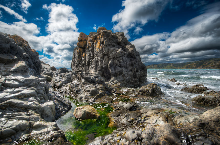 HDR Photo - Wellington, New Zealand - The Jagged Coast - Breaker Bay