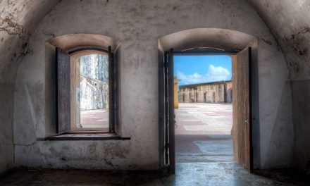 Windows In Time