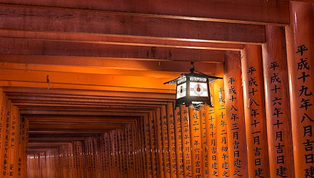 Sacred Path || Fushimi Inari Shrine
