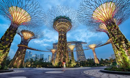 Under The Supertrees | Singapore