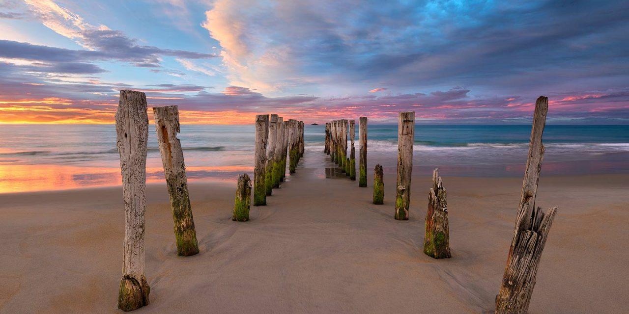 Soft Surrender   St Clair Beach, New Zealand