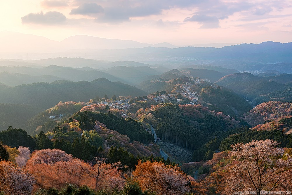 Sacred Mountain - Yoshino - Japan