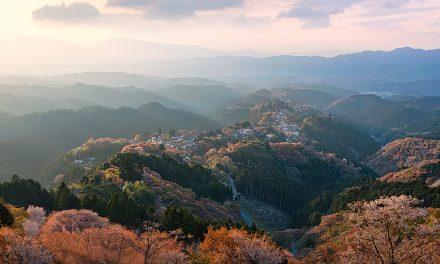 Sacred Mountain | Japan