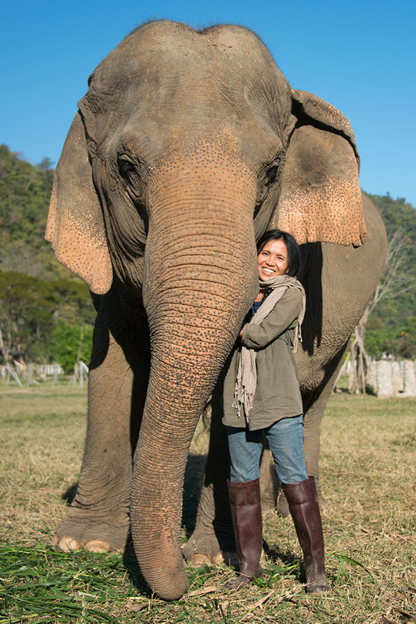 Lek-with-Elephant-2014-sm