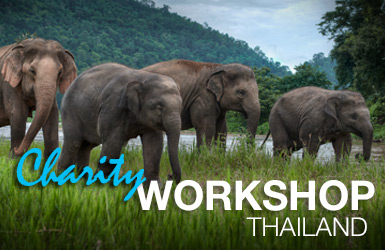 Photography-Workshop-Photo-Tour-Image-385px-thailand