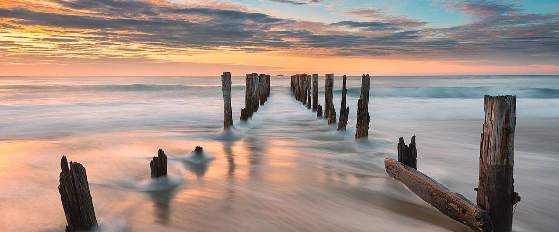Rising Tide | New Zealand
