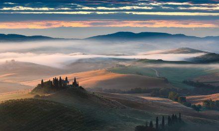 Misty Melody | Tuscany