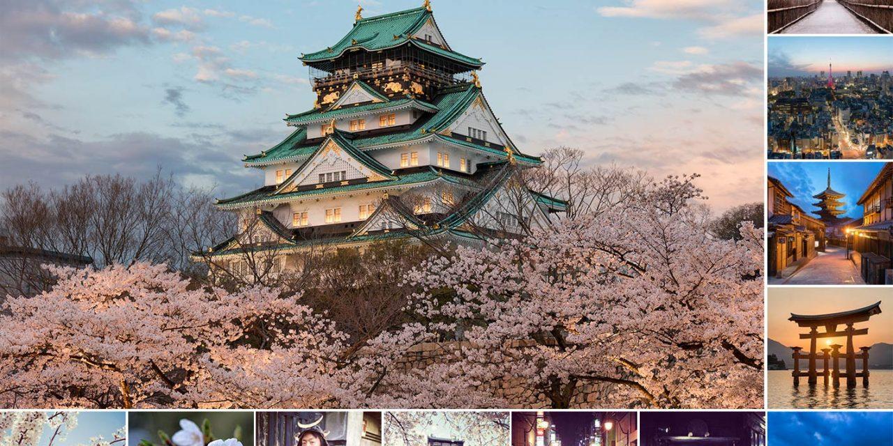 The Harmony of Japan vs. The Sakura Apocalypse