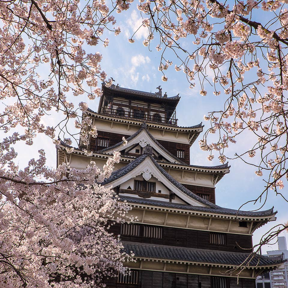 Instagram-Hiroshima-Castle-Cherry-Blossoms-Japan