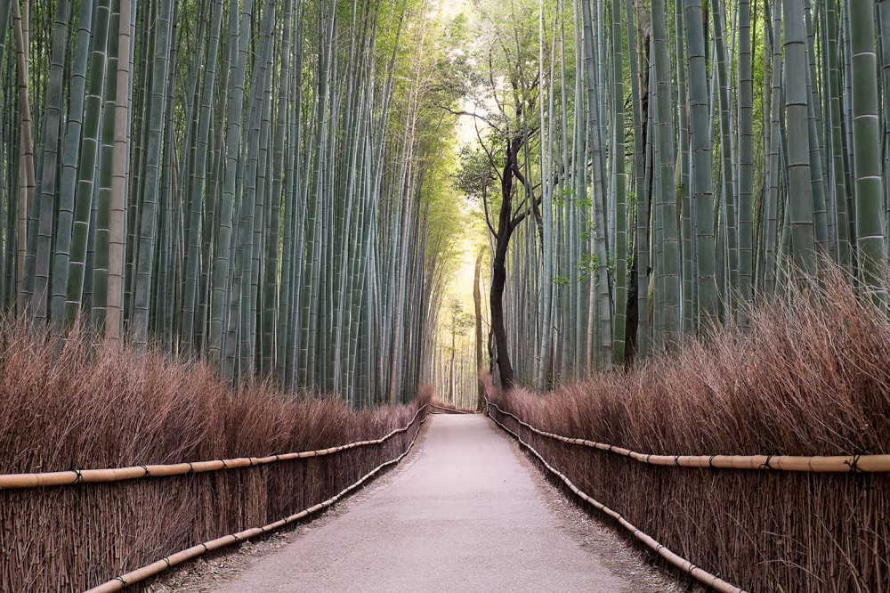 Arashiyama, Japan - March 2014 - Fujifilm X-E2 | Fujinon XF 18-55 Lens | 25mm | f/9 | ISO 200 | 0.6 sec