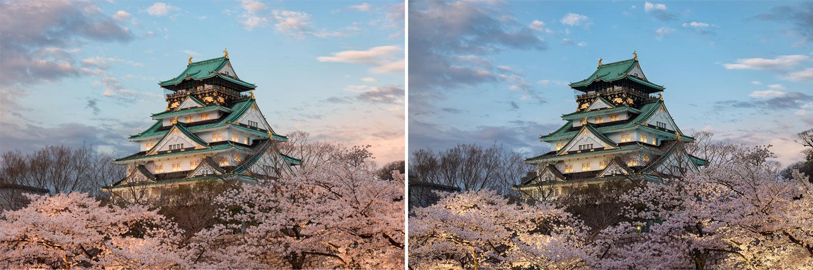 Left: Nikon D800 Image | Right: Fujifilm X-E2 Image