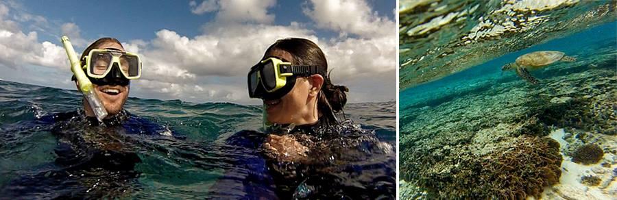 06-Lady-elliot-snorkeling