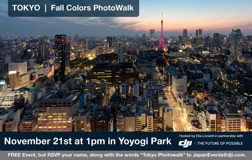 15-11-DJI-JAPAN-PW