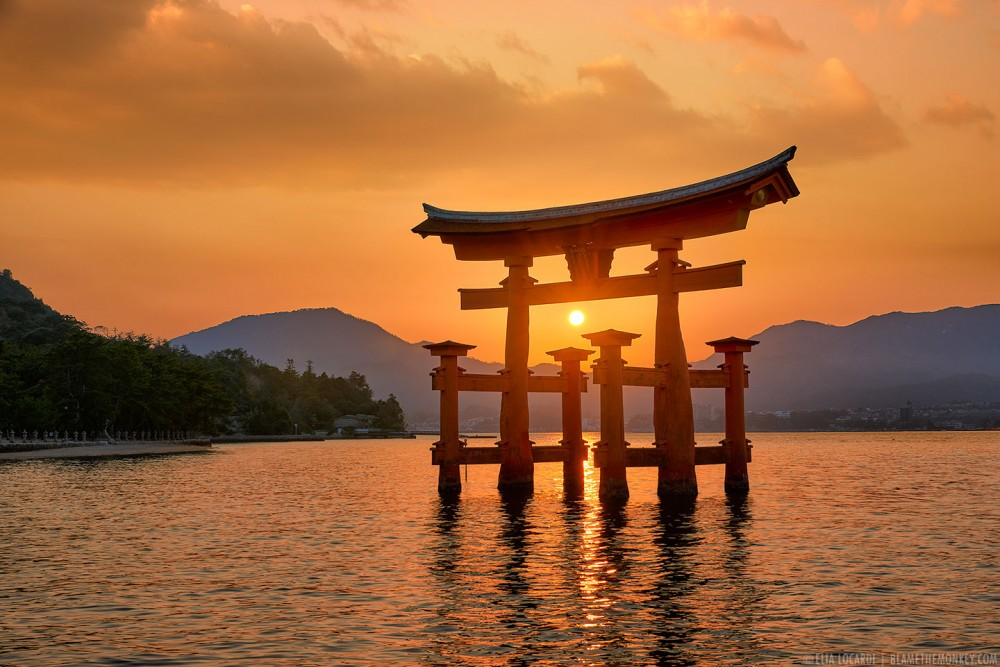 Floating on Light || Itsukushima Japan
